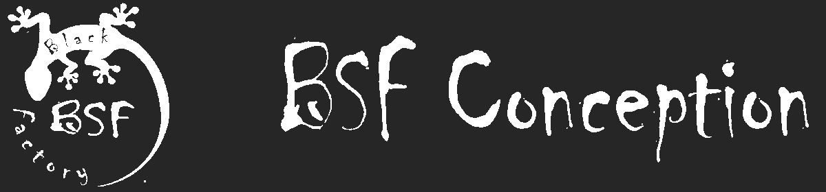 BSF Conception